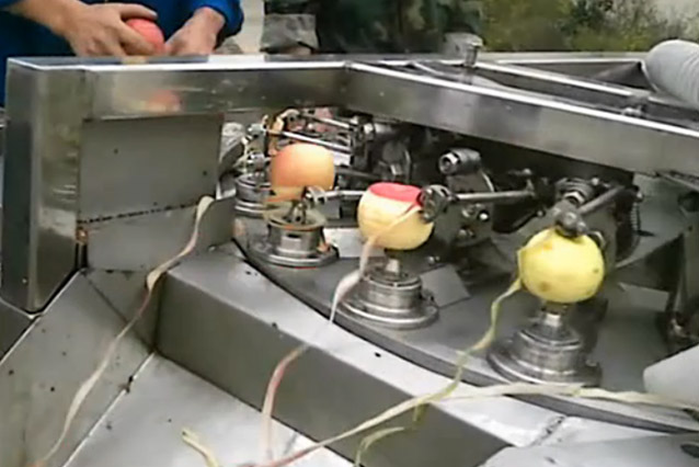 apple pitting peeling machine